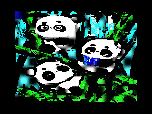 http://events.retroscene.org/cache/6852_pandas.png